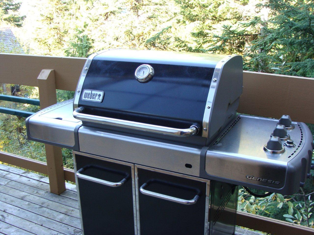 Whistler Luxury Accommodation Northern Lights 19 BBQ