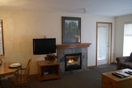 Stoney Creek Northstar 2 - Fireplace